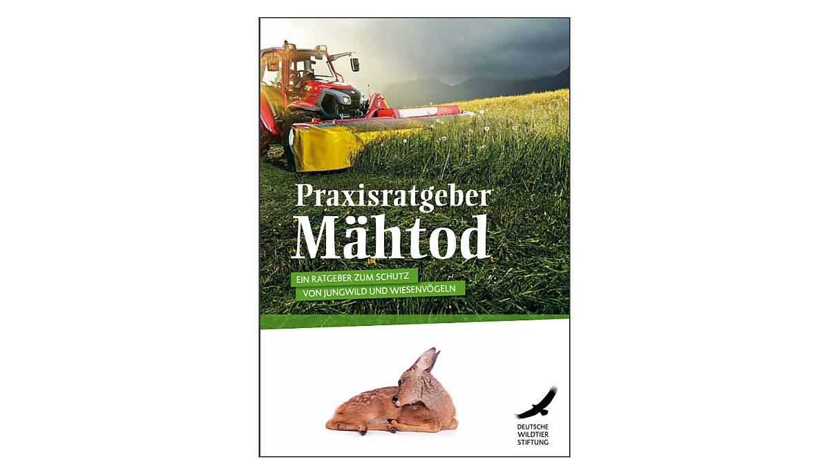 cover-ratgeber-maehtod-download