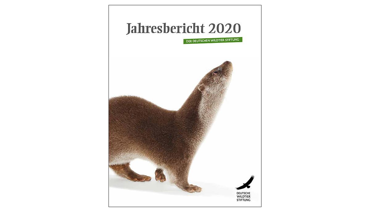 cover_jahresbericht-2020_1500x860px