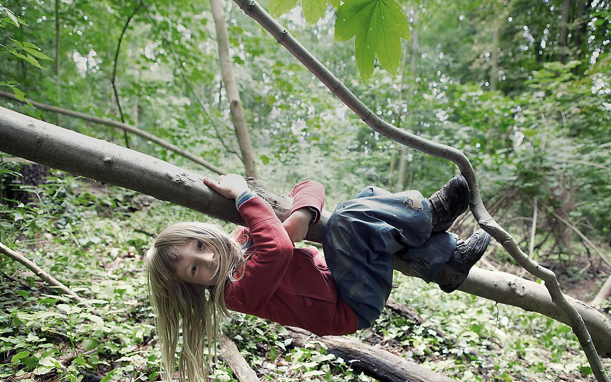 Kind spielt auf Baum