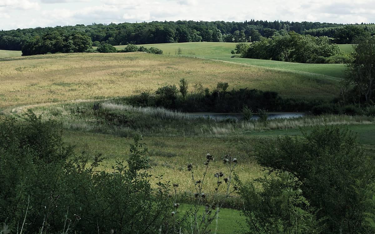 Landschaft von Klepelshagen