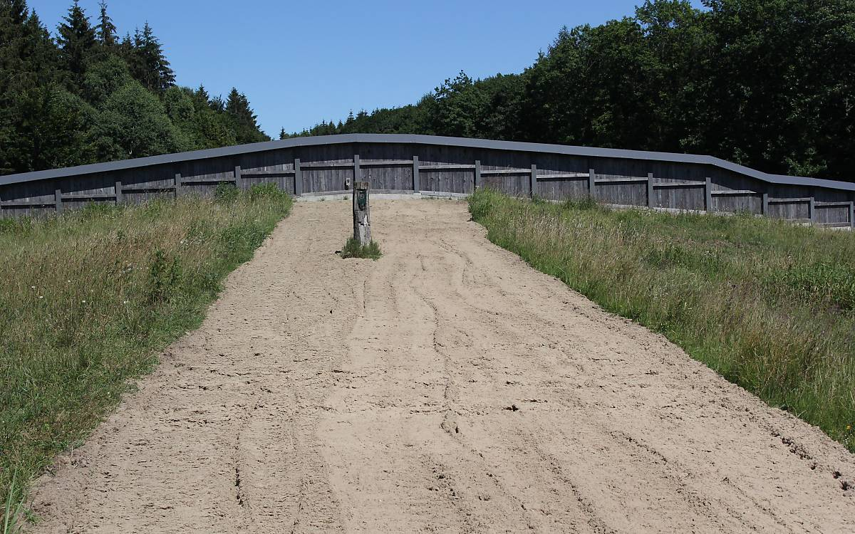 Die Grünbrücke.