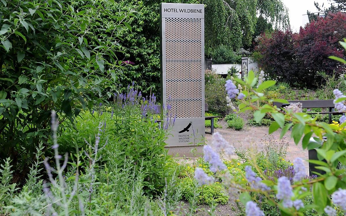 Nisthilfe im Botanischen Garten Planten un Blomen