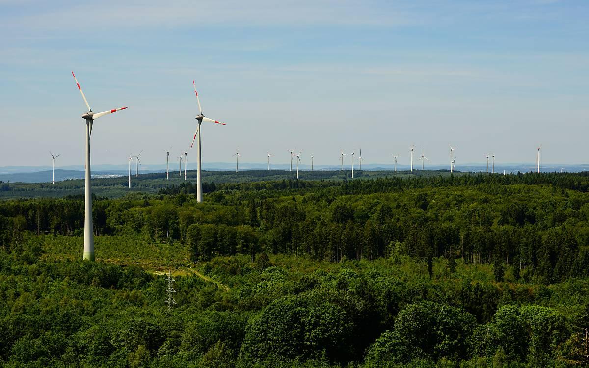 Windenergieanlagen im Lebensraum Wald