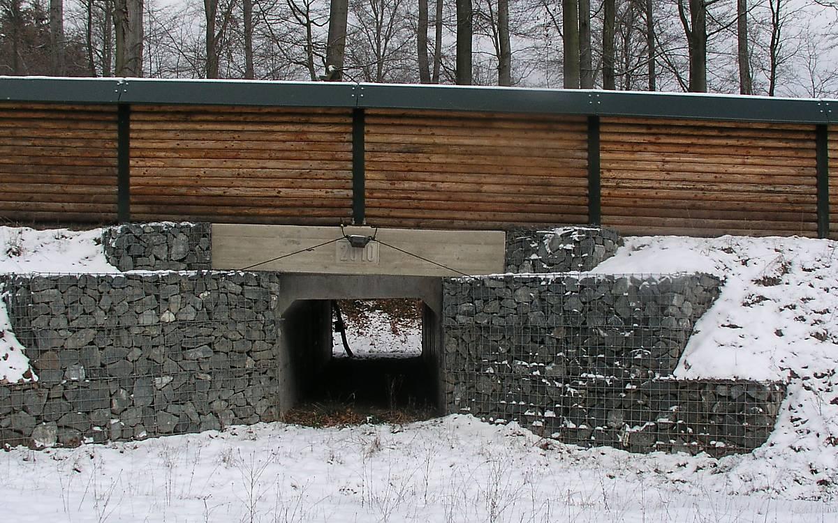 tunnel-sichtschutz-querungshilfe