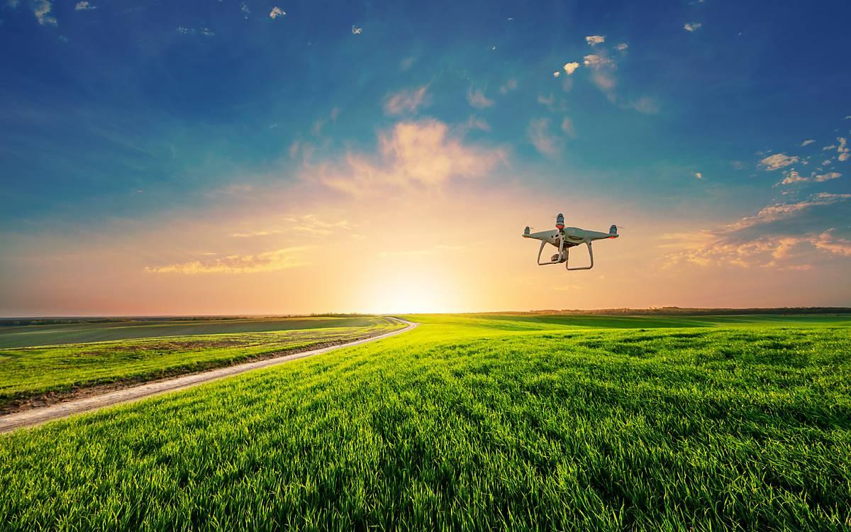 Mit einer Drohne wird eine Wiese nach versteckten Rehkitzen abgesucht.