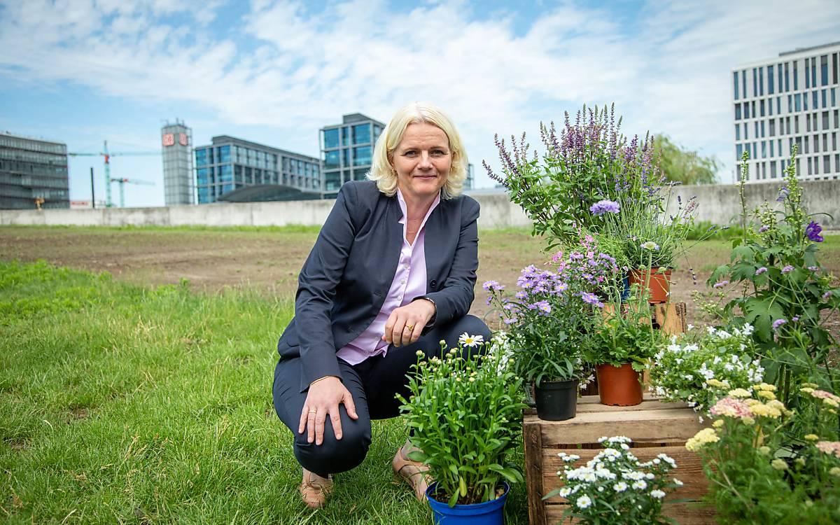 """Umweltsenatorin Regine Günther: """"Berlin kann wichtige Lebensräume für Insekten bieten, wenn nicht immer mehr Flächen versiegelt, sondern Brachen begrünt und bestäuberfreundlich gestaltet werden."""""""