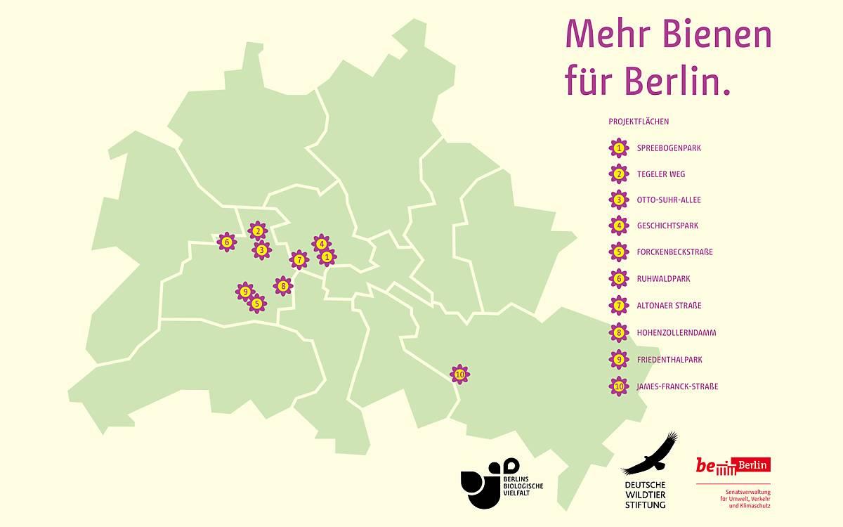Diese Flächen werden vom Berliner Senat, den Bezirken und der Deutschen Wildtier Stiftung wildbienenfreundlich umgestaltet.