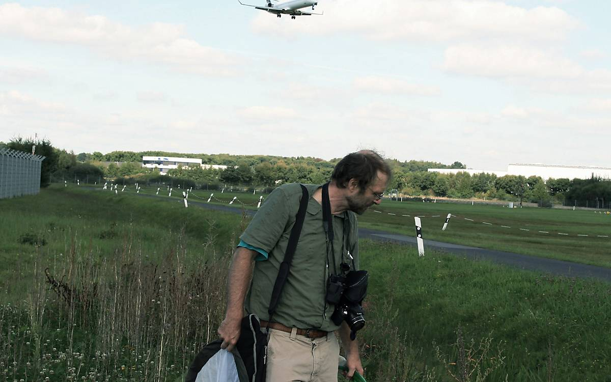 Wildbienenmonitoring auf dem Gelände des Airport Hamburg.
