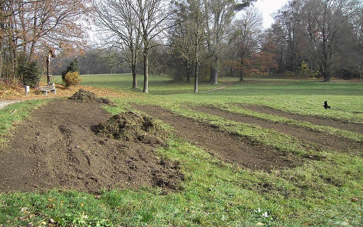 Bodenvorbereitung für die Ansaat mit heimischem Saatgut