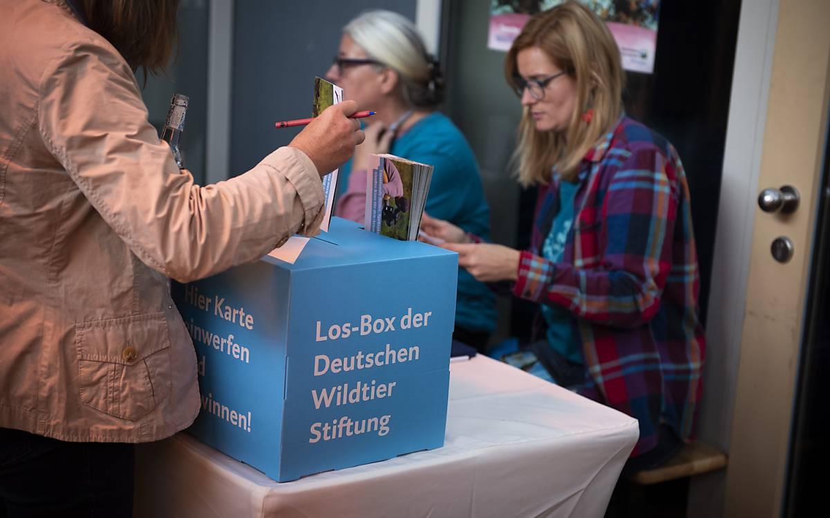 """Die Deutsche Wildtier Stiftung verlost die DVD zum Film """"Die Wiese – Ein Paradies nebenan"""""""