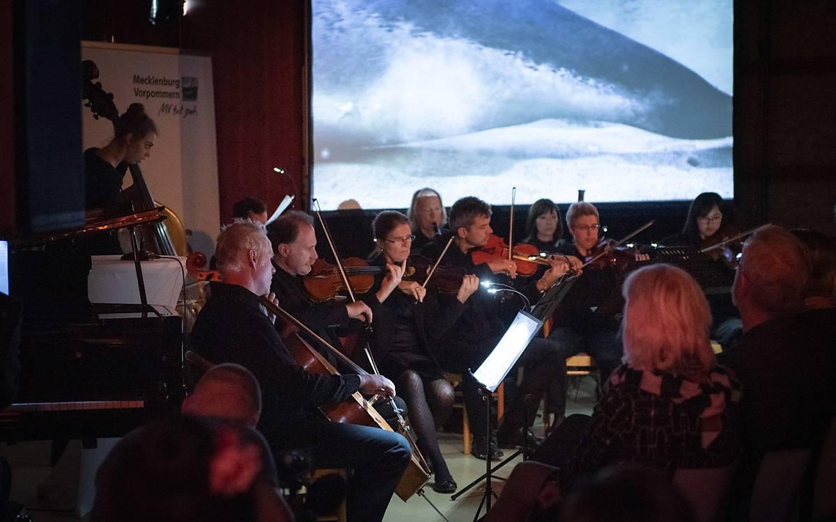 Filmmusik live bei der großen Gala zur Verleihung des 12. Deutschen NaturfilmPreises in Wieck