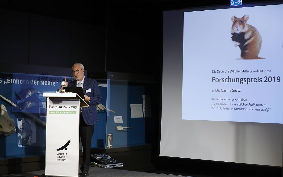 Prof. Dr. Fritz Vahrenholt, Alleinvorstand der Deutschen Wildtier Stiftung. Foto: Andreas Costanzo