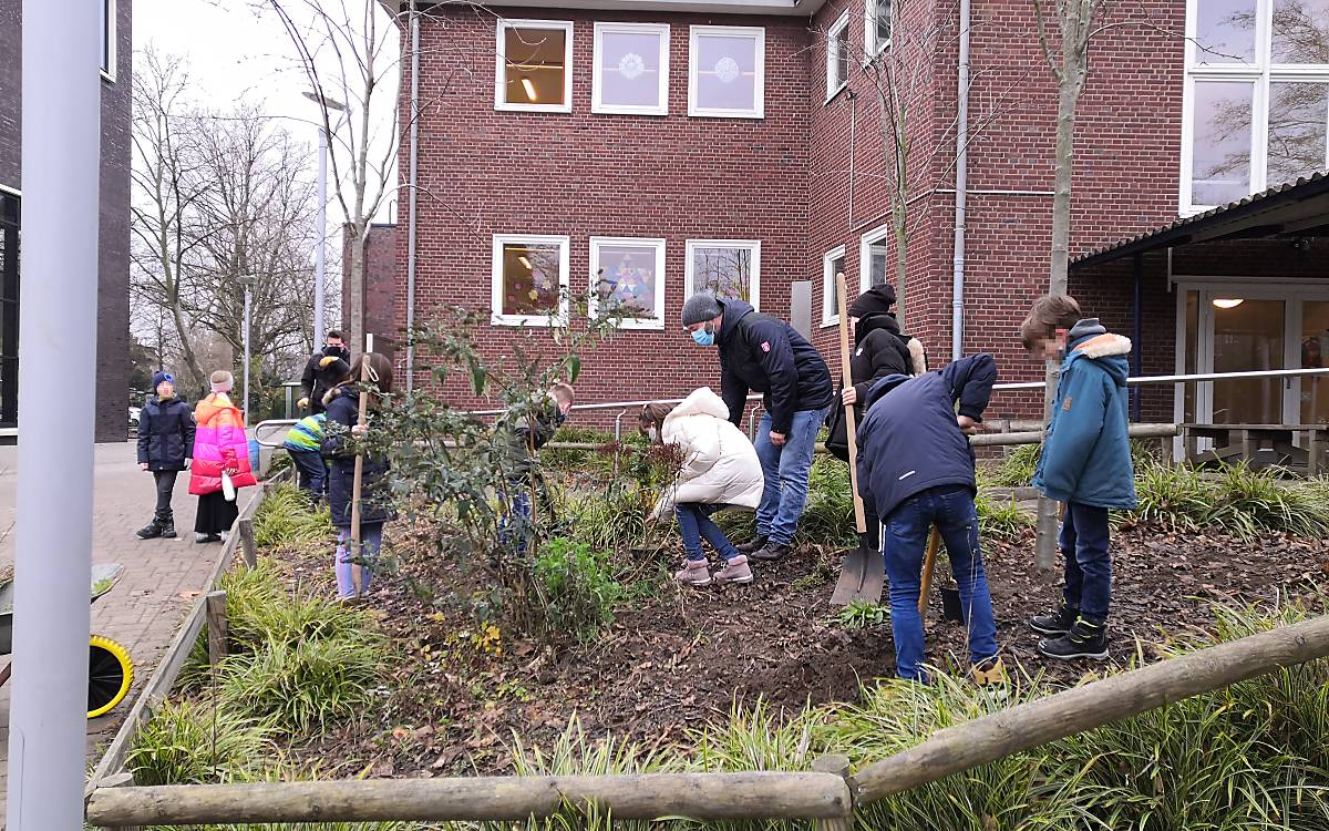 Schule St. Paulus in Hamburg: Kinder helfen bei der Bepflanzung von Sträuchern für Spatzen