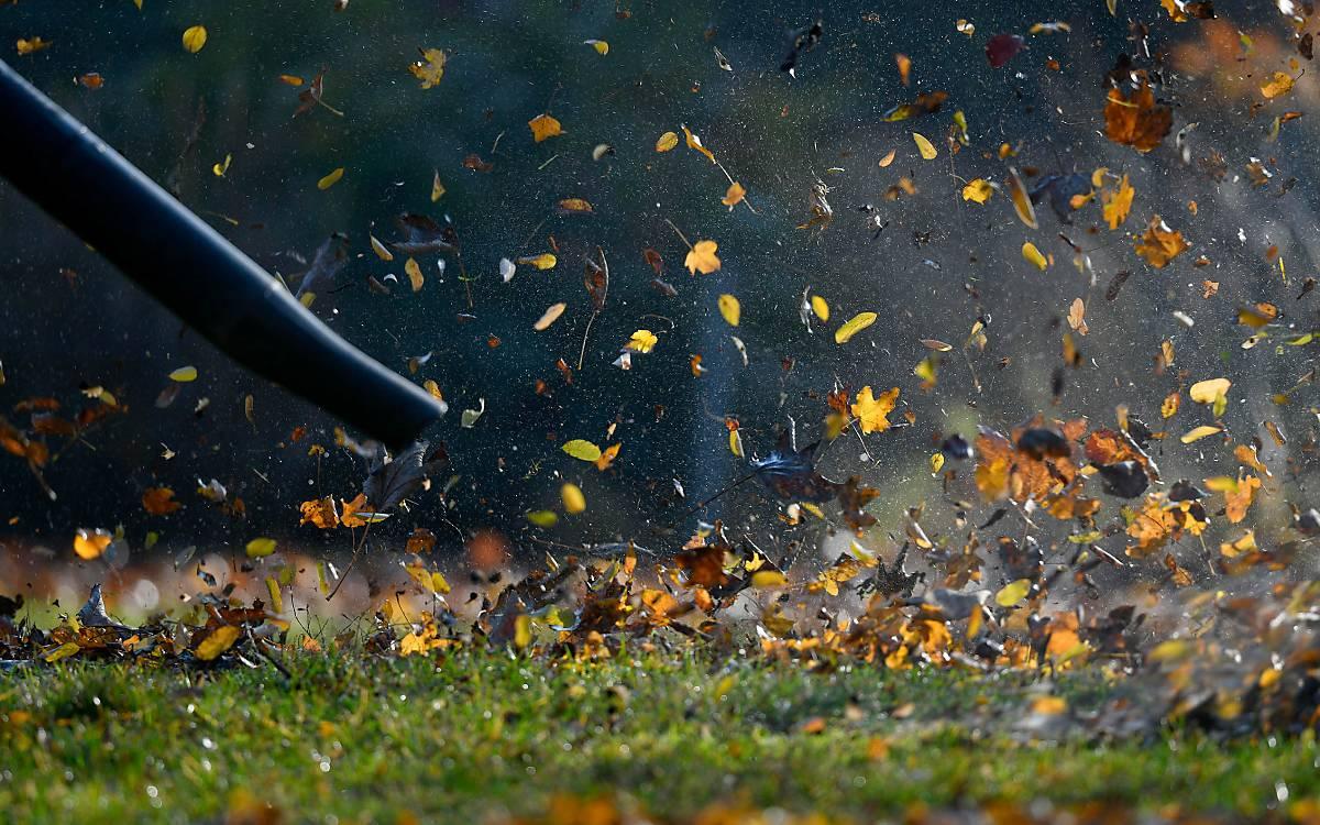 Laubbläser bläst Herbstlaub Foto: © imageBROKER.com / Michael Weber