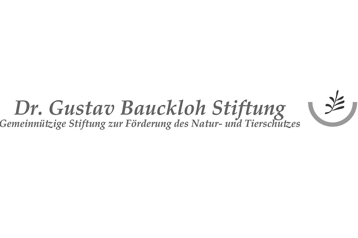 Logo Dr. Gustav Bauckloh Stiftung