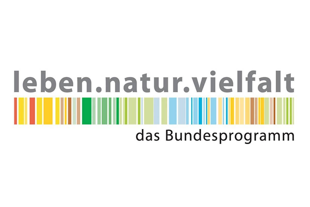 logo1b
