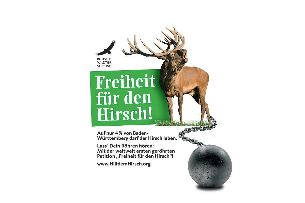 HilfdemHirsch.org