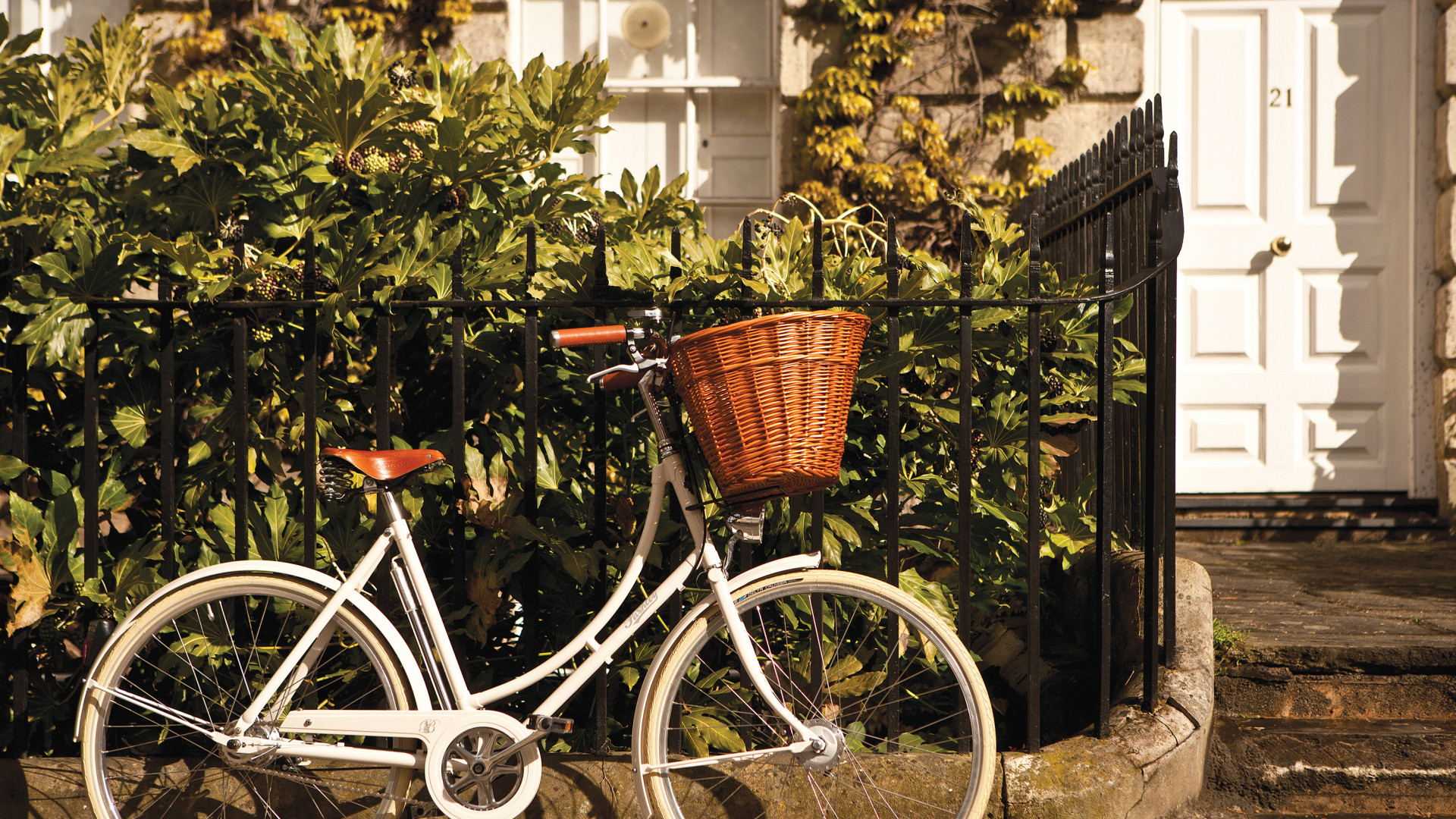 Pashley Cycles Bespoke Website Case Study