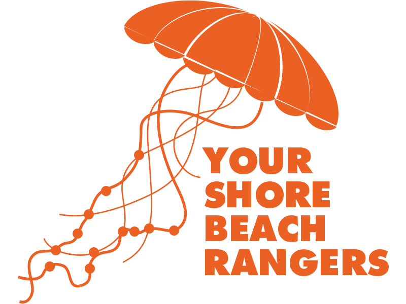 Your shore beach rangers logo in orange