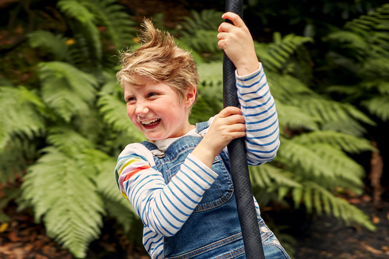 Child on a zip wire at Trebah Gardens Cornwall at 6x4 ratio