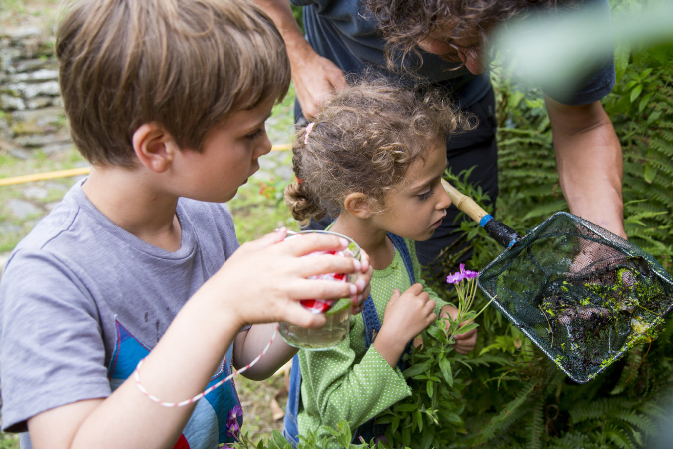 Higher Newham pond dipping image with children
