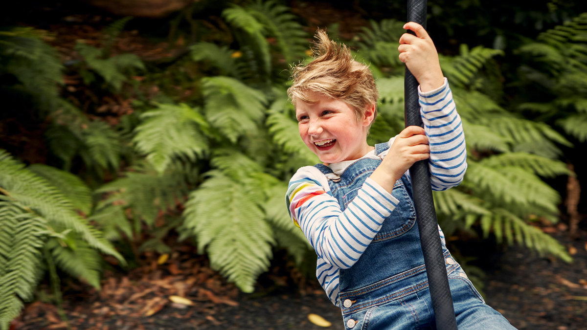 Child on a zip wire at Trebah Gardens Cornwall at 16:9 ratio