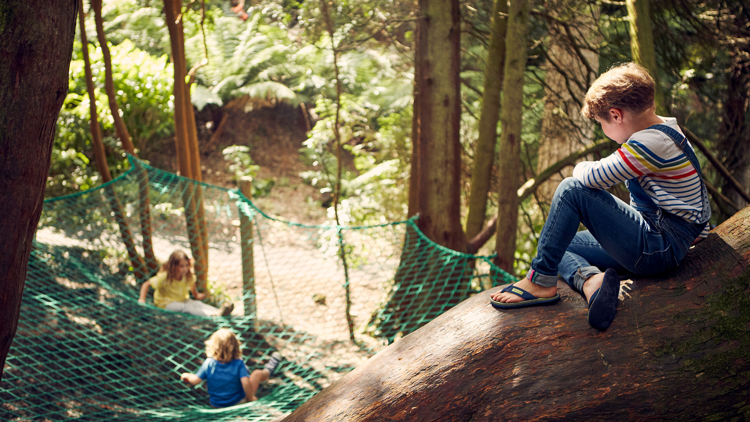Children playing at the play area at Trebah Garden Cornwall