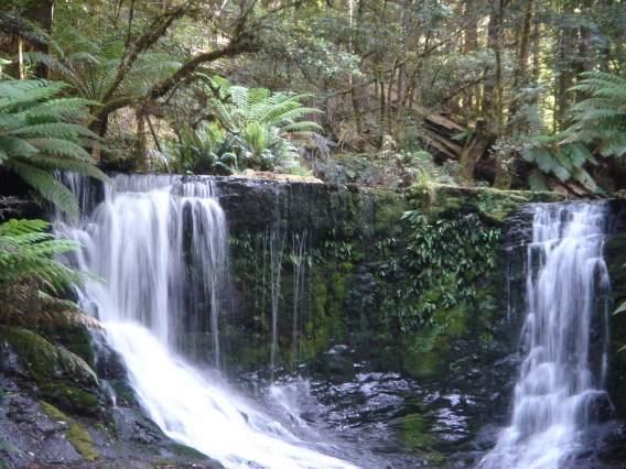 ツアー1日目 ラッセル滝、セントクレア湖、マウントフィールド国立公園