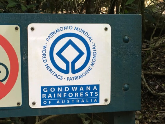 O'Reilly's Rainforest Retreatに到着