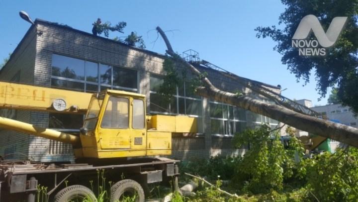 В Ульяновске завершается уборка 290 деревьев, поваленных на территории детских садов и школ