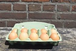 De Hooierij - Biologische Eieren