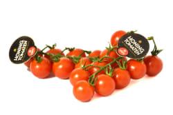 Groentelein - Tros honing tomaatjes