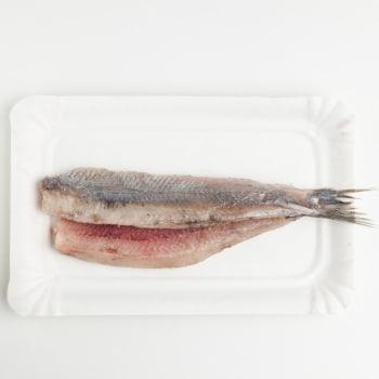 Vof. Vishandel R. van de Mheen - Haring