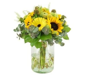 Bloemen aan de Vecht - Zonnige zomer
