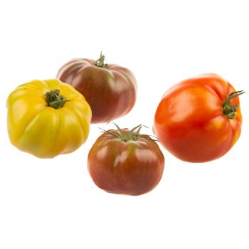 Landzicht Biologisch - Heritage Coeur de Boeuf tomaten mix