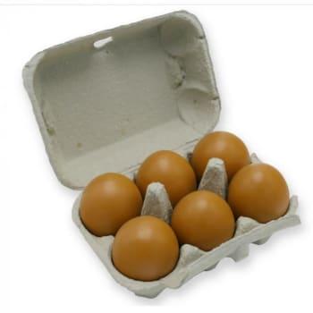 Landzicht Biologisch - Biologische Eieren