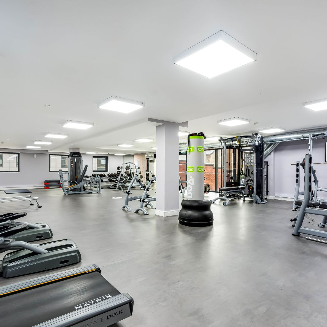 Gym with treadmills, strength equipment and free standing punch bag at IconInc, The Edge. Student Accommodation in Leeds