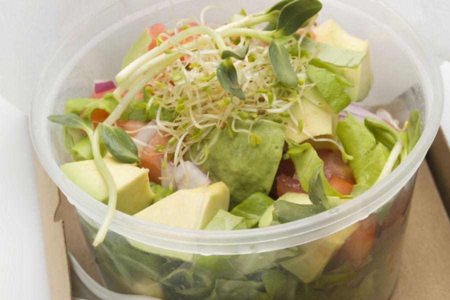 Avocado-Sprossen-Salat