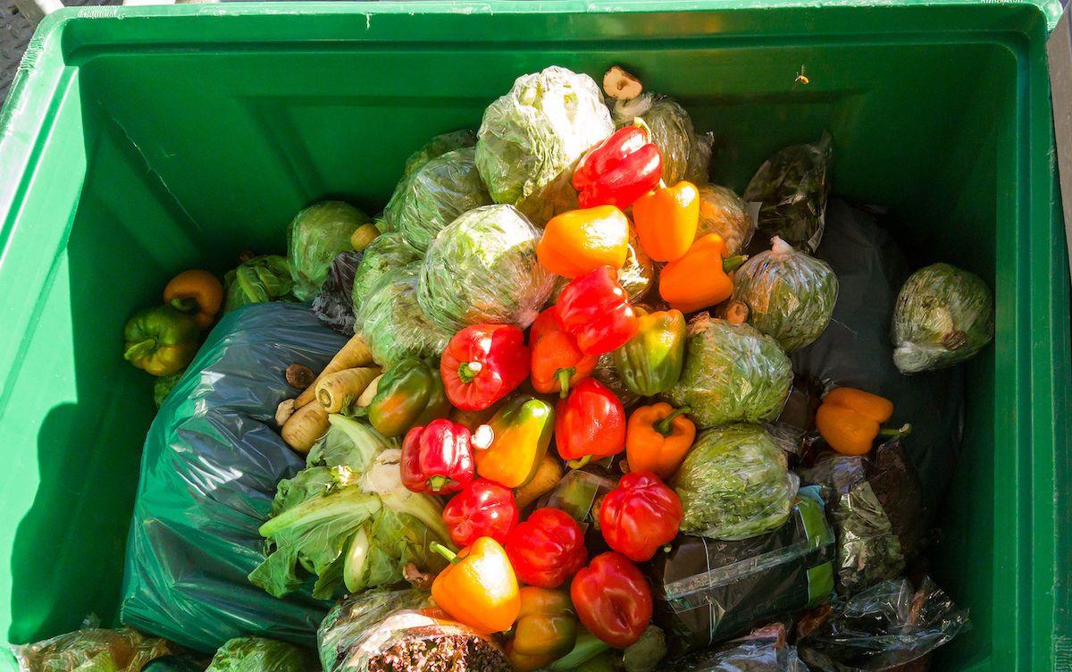 Vor allem frische Lebensmittel landen häufig im Müll.