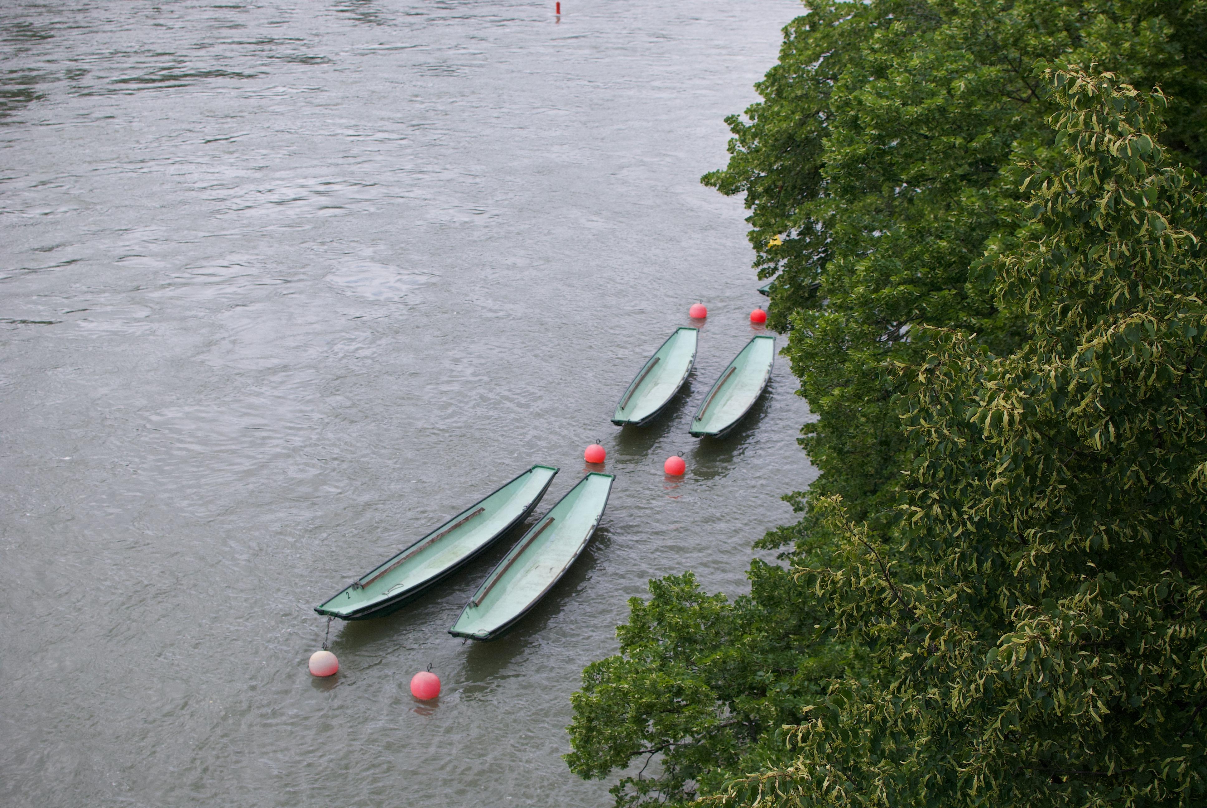 Les canoës du Rhin.jpeg