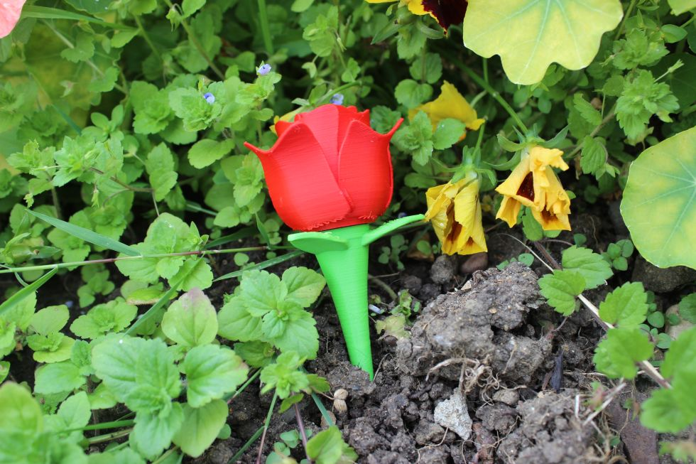3D printed rose