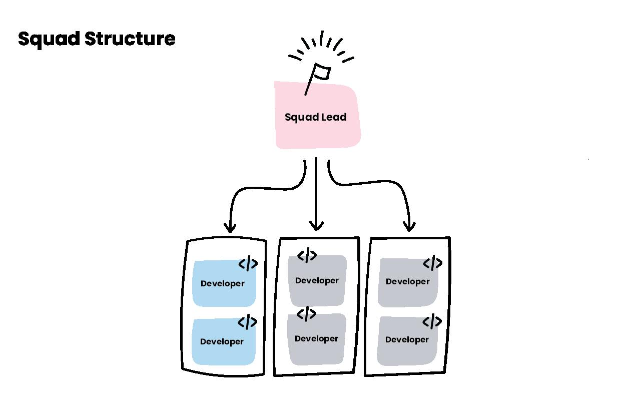 Figure 2: Squad structure
