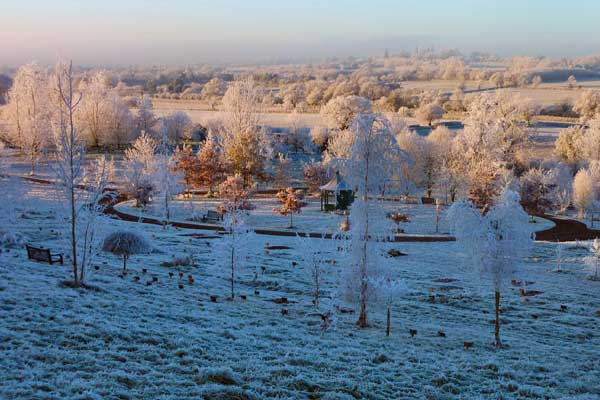 Winter in Westall Park