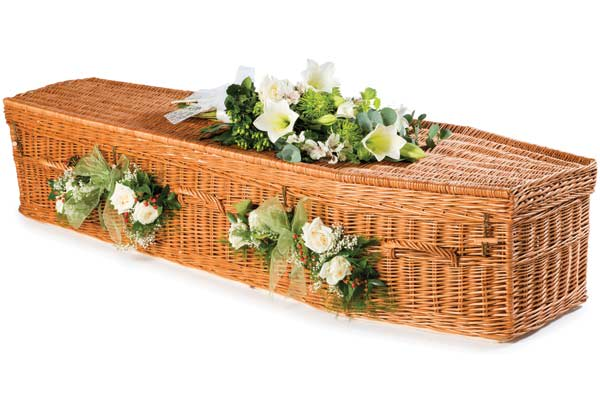 Willow traditional shape coffin