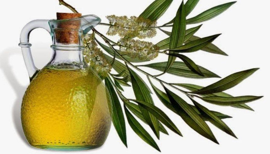 tea tree oil for ganglion cysts