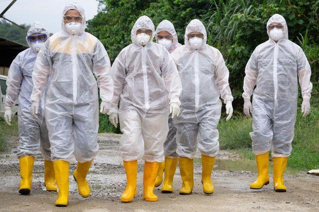 Главный врач инфекционной больницы в Коммунарке рассказал о двух сценариях развития пандемии