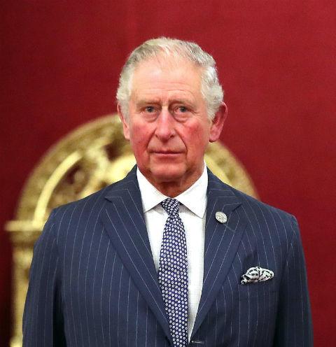 Букингемский дворец подтвердил заражение принца Чарльза коронавирусом