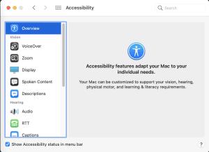 macOS Big Sur Accessibility preferences main dialogue