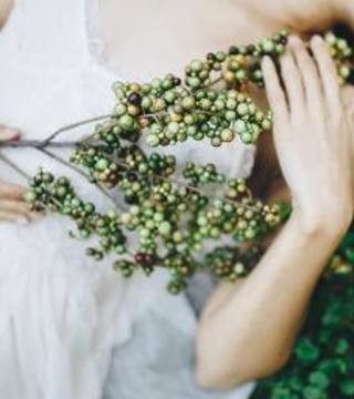 Promotional Image for Lindsey Windett