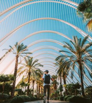 Promotional Image for Sam Mcallister